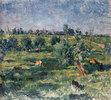 Landschaft bei Rees