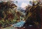 Eine Schlucht auf dem Wege von Jalapa nach Veracruz. Aquarell, Anfang 1830-er