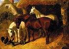 Pferde und Hühner auf einem Bauernhof