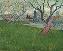 Blühender Obstgarten mit Blick auf Arles