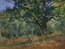 Bodmer Eiche im Wald von Fontainebleau