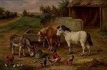 Tiere auf einem Bauernhof