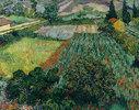 Mohnfeld und Felder