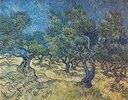 Olivenbäume (Les Oiliviers)