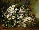 Blühender Apfelzweig, auch: Kirschblüten