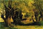 Landschaft unter Bäumen