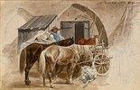 Pferde im Passauer Hof in Wien