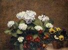 Stilleben mit Hortensien und Stiefmütterchen