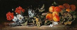 Aprikosen und Blumenzweige