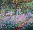 Blühende Iris in Monets Garten