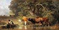 Hüterbub mit Kühen an der Tränke