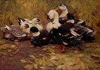 Sechs Enten im Herbstlaub