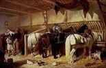 Gespannpferde im Stall