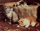 Junge Katzen spielen in einem Nähkorb