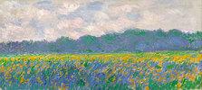 Gelbe Iris bei Giverny