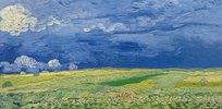 Weizenfelder unter Gewitterwolken