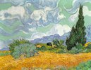 Wheatfield with Cypresses