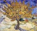 Maulbeerenbaum