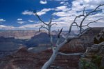 USA; Arizona; Grand Cayon National Park