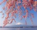 Fuji-san, Fuji-Hakone-Izu-Nationalpark, Honshu, Japan