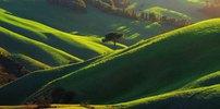 Typical countyside near Volterra village,Toskana,Italien