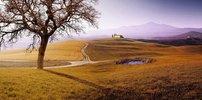 landscape, Val d'Orcia, Provinz Siena, Toskana, Italien