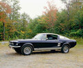 1966 Ford Mustang Gate