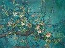 Apfelblüte 08, Öl auf leinwand 60 x 80 cm