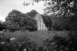 Bewachsene Ruine in Irland