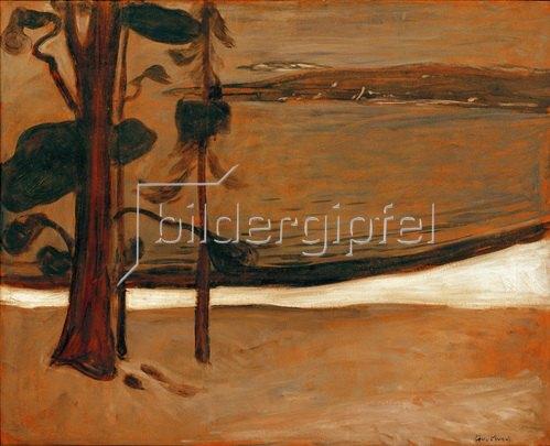 Edvard Munch: Strand