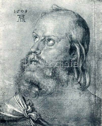 Albrecht Dürer: Kopf eines Apostels, 1508