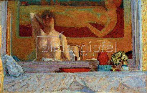 Pierre Bonnard: Der Kamin