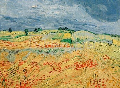 Vincent van Gogh: Felder mit blühendem Mohn, Auvers-sur-Oise, 1890