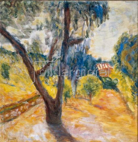 Pierre Bonnard: Landschaft mit Ölbaum