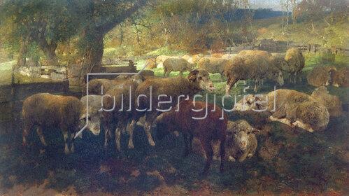 Heinrich von Zügel: Schafe unter Bäumen