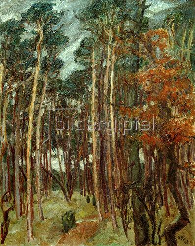 Max Beckmann: Hermsdorfer Wald am grauen Tag, 1908