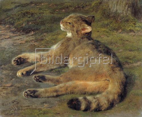 Rosa Bonheur: Wildkatze
