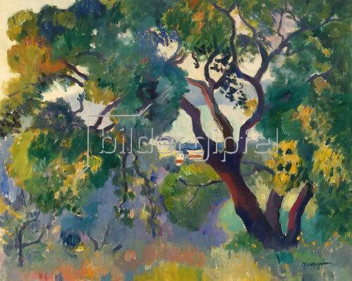 Henri Manguin: Landschaft bei St Tropez.