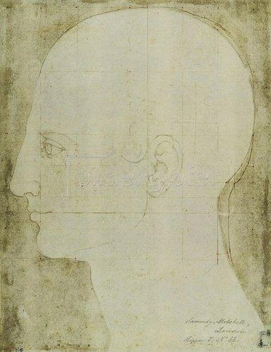 Albrecht Dürer: Kopf eines Mannes im Profil, um 1513/14.
