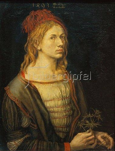 Albrecht Dürer: Selbstbildnis mit Distel. 1493