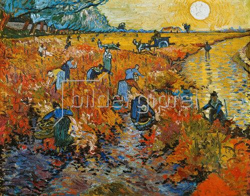Vincent van Gogh: Der rote Weingarten in Arles. 1888.