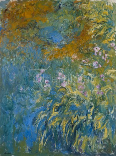 Claude Monet: Gelbe Iris.