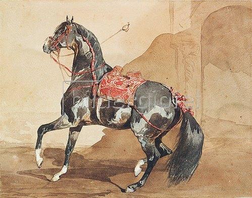 Französisch: Arabisches Pferd.