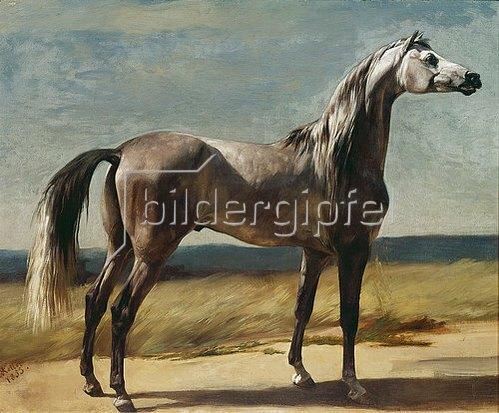 Rudolf Koller: Vollblutpferd in einer Landschaft. 1853.