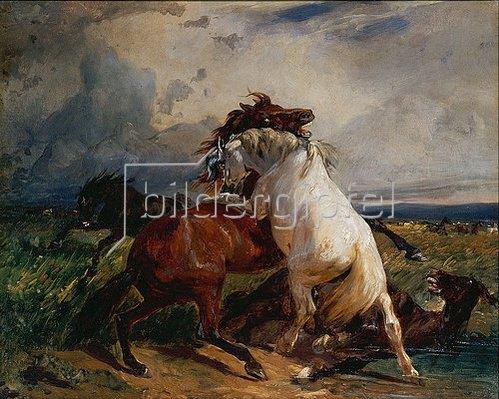 Rudolf Koller: Kämpfende Pferde. 1845/1850.