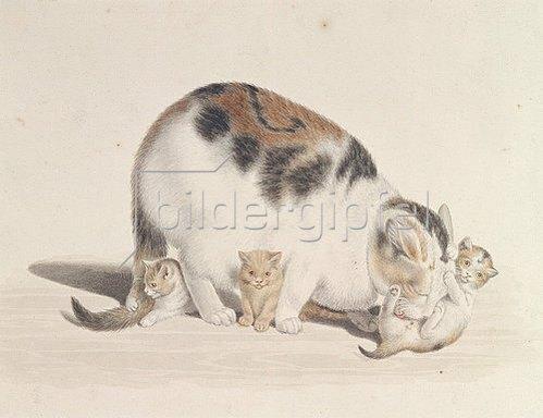Gottfried Mind: Katze mit drei Jungen.