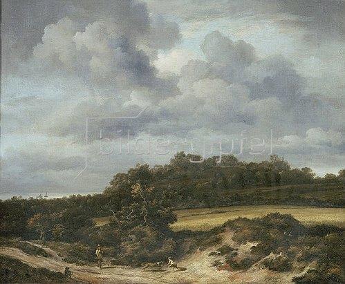 Jacob Isaacksz van Ruisdael: Das Kornfeld. 1660er Jahre