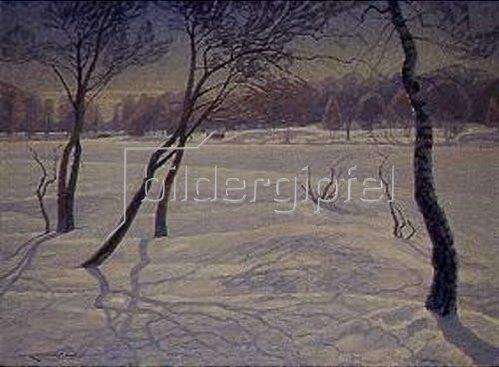Carl Johansson: Sonniger Wintertag in Schweden.