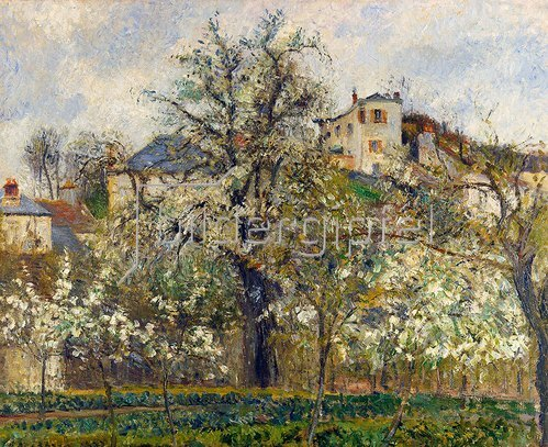 Camille Pissarro: Gemüsegarten mit blühenden Obstbäumen. 1877