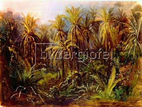 Johann Moritz Rugendas: Der Palmenwald bei Manzanillo. Anfang 1830-ger Jahre.